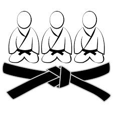 Logo de Judomeesters